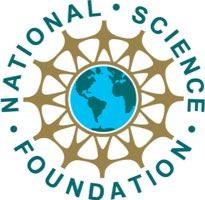 logo_nsf2